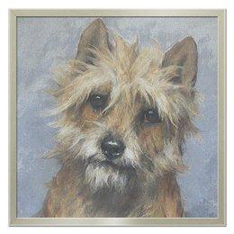 """Холст 50x50 """"Портрет собаки"""" - новый год, картина, собака, 2018, артур вардль"""