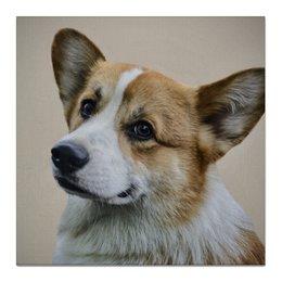 """Холст 50x50 """"Вельш Корги Пемброк"""" - природа, собаки, вельш корги пемброк, корги, welsh corgi"""