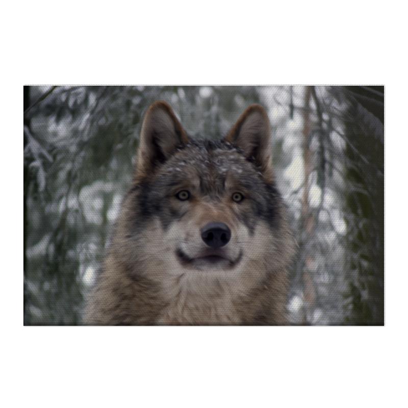 Холст 50x75 Printio Волк в лесу колычев в голодный волк или герои городского дна