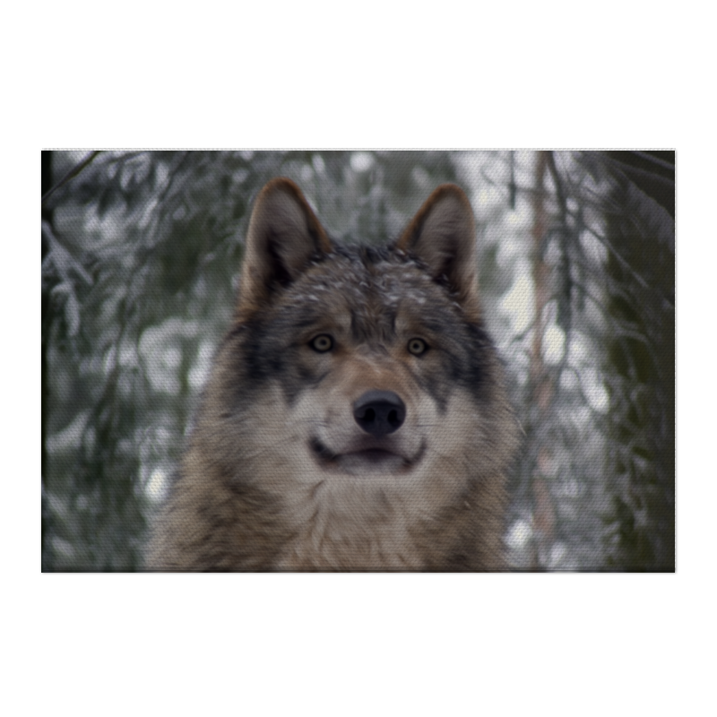 цена на Printio Волк в лесу