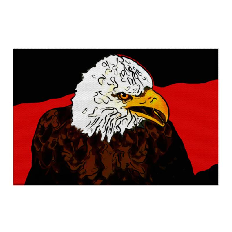 Холст 50x75 Printio Белоголовый орлан берет