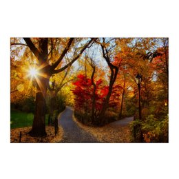 """Холст 50x75 """"осенний парк"""" - осень, краски, природа"""