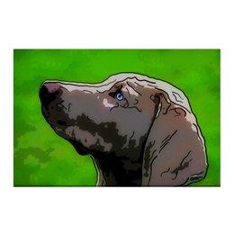 "Холст 50x75 ""Веймаранер"" - животные, собаки"