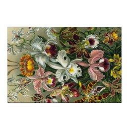 """Холст 50x75 """"Орхидеи (Orchideae, Ernst Haeckel)"""" - цветы, картина, орхидея, красота форм в природе, эрнст геккель"""