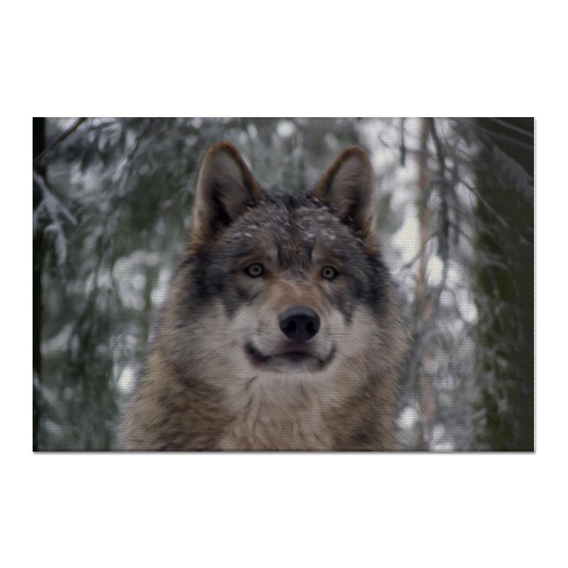 Холст 60x90 Printio Волк в лесу холст 60x90 printio лось в лесу
