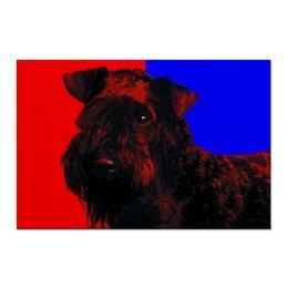 "Холст 60x90 ""Керри-блю-терьер"" - собаки, терьер, керри-блю-терьер, kerry blue terrier"