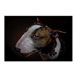 "Холст 60x90 ""Бультерьер"" - собака, бультерьер, bull terrier"