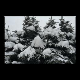 "Холст 60x90 """"Зима"""" - арт, зима, красота"