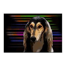 """Холст 60x90 """"Салюки"""" - животные, собаки, борзая, салюки, персидская борзая"""
