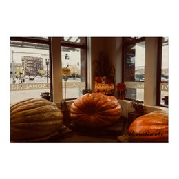 "Холст 60x90 ""Осень"" - осень, тыква, урожай, 50оттенковосени"