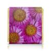 "Шоколадка 35х35 ""Астры"" - цветы, цветок, растение, природа, астра"