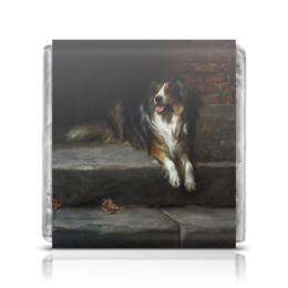 """Шоколадка 35х35 """"Колли (картина Артура Вардля)"""" - собака, черно-белый, живопись, артур вардль, колл"""