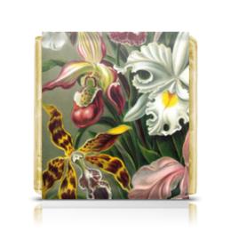 """Шоколадка 35х35 """"Орхидеи 1 (Orchideae, Ernst Haeckel)"""" - картина, эрнст геккель, орхидея, 14фев, 8мар"""