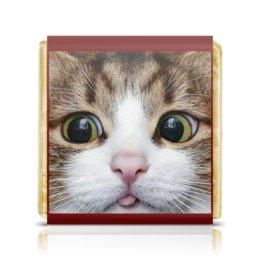 """Шоколадка 3,5×3,5 см """"КОШКИ. МАГИЯ КРАСОТЫ"""" - животные, стиль, котенок, красота, арт фэнтези"""