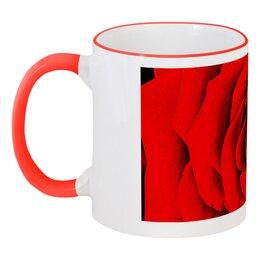 """Кружка с цветной ручкой и ободком """"Красная роза """" - цветы, роза, красная роза"""