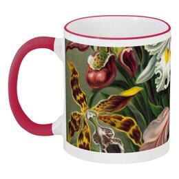 """Кружка с цветной ручкой и ободком """"Орхидеи (Orchideae, Ernst Haeckel)"""" - картина, орхидея, день матери, красота форм в природе, эрнст геккель"""