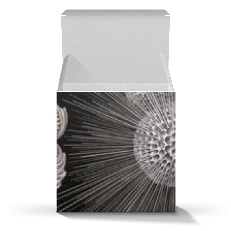 Коробка для кружек Printio Globigerina, ernst haeckel коробка для кружек printio discomedusae дискомедузы ernst haeckel