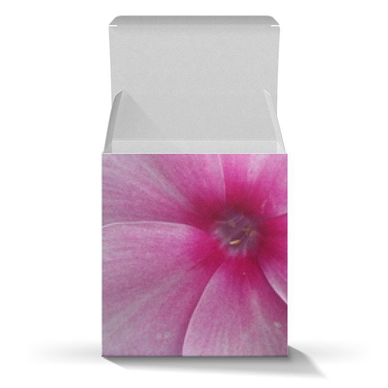 Коробка для кружек Printio Цветущая долина эксмо блокнот цветущая сакура