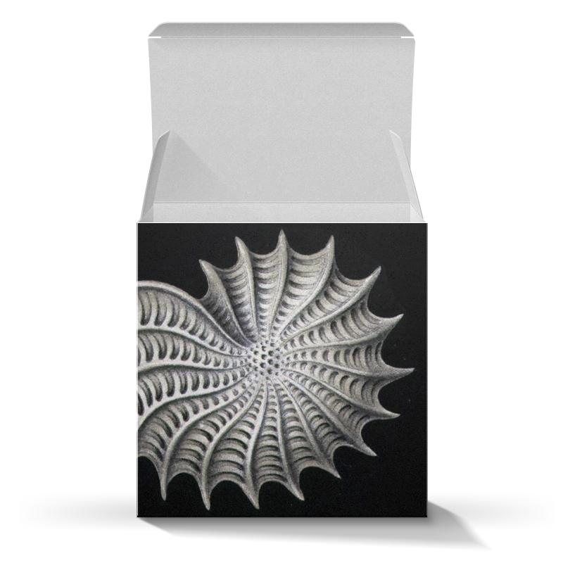 Подарочная коробка-куб Printio Nautilus, ernst haeckel клиромайзер aspire nautilus киев