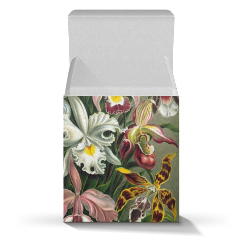 Подарочная коробка-куб Printio Орхидеи (orchideae, ernst haeckel) самые дешевые орхидеи в москве