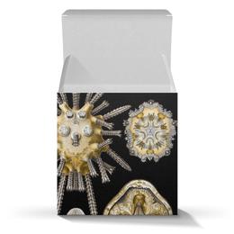 """Коробка для кружек """"Echinidea (Эхинидея), Ernst Haeckel"""" - новый год, картина, биология, красота форм в природе, эрнст геккель"""