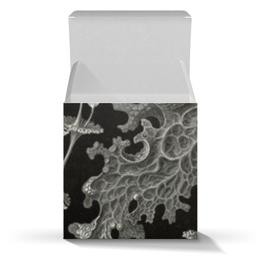 """Коробка для кружек """"Лишайники (Lichenes, Ernst Haeckel)"""" - черно-белый, биология, красота форм в природе, эрнст геккель, лишайники"""