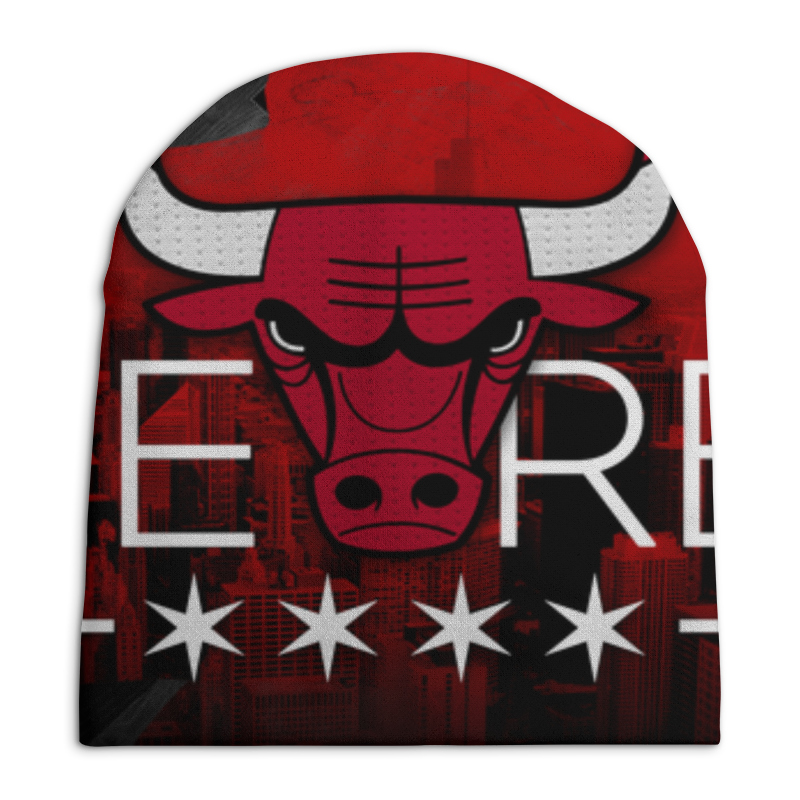 лучшая цена Printio Chicago bulls