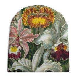 """Шапка унисекс с полной запечаткой """"Орхидеи (Orchideae, Ernst Haeckel)"""" - цветы, картина, орхидея, красота форм в природе, эрнст геккель"""