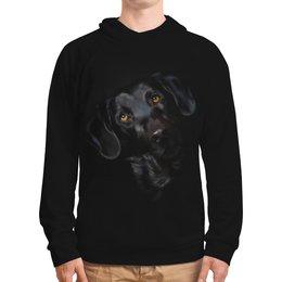 """Толстовка с полной запечаткой """"Собака"""" - животные, пес, щенок, собака"""