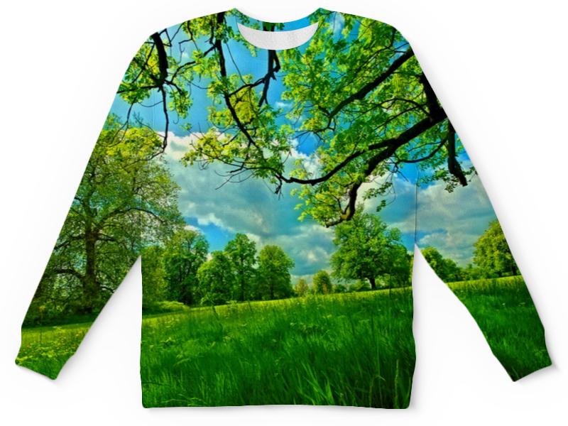 Printio Весенний пейзаж детский свитшот унисекс printio горный пейзаж
