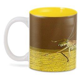 "3D кружка ""Саранча."" - насекомое, насекомые, саранча, кузнечик, макро мир"