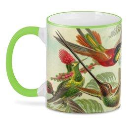 """3D кружка """"Колибри"""" - эрнст геккель, колибри, красота форм в природе, птицы, арт"""