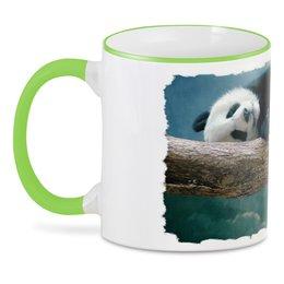 """3D кружка """"спящая панда"""" - животные, панда, дикая природа"""