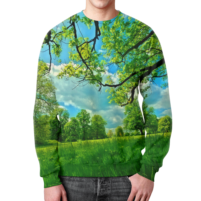 Свитшот мужской с полной запечаткой Printio Весенний пейзаж свитшот мужской с полной запечаткой printio весенний вальс цветов