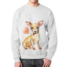 "Свитшот мужской с полной запечаткой ""Pam-pam-pam-pa-pa... Chihuahua!"" - арт, собака, чихуахуа"