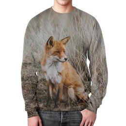 """Свитшот мужской с полной запечаткой """"Лиса     """" - животные, фото, лиса, лисичка"""