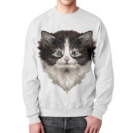 """Свитшот унисекс с полной запечаткой """"Морда кота"""" - коты, котики, животные, cat, кошка"""