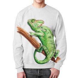 """Свитшот унисекс с полной запечаткой """"Зеленый хамелеон на ветке"""" - зеленый, зверь, животное, ящерица, хамелеон"""