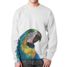 """Свитшот унисекс с полной запечаткой """"синий попугай"""" - птица, попугай, акварель, синяя птица, ару"""
