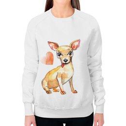 "Свитшот женский с полной запечаткой ""Pam-pam-pam-pa-pa... Chihuahua!"" - арт, собака, чихуахуа"