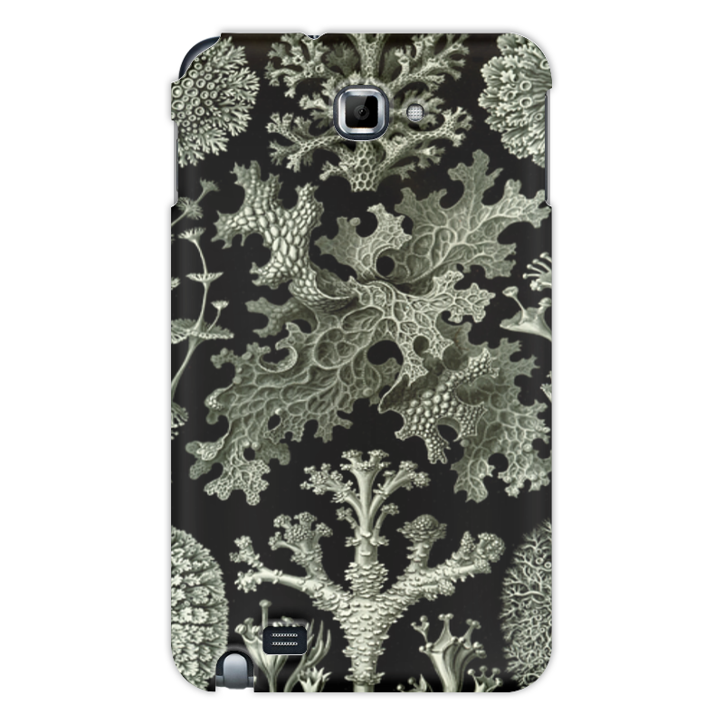 Чехол для Samsung Galaxy Note Printio Лишайники (lichenes, ernst haeckel) чехол для samsung galaxy s7 edge силиконовый printio лишайники lichenes ernst haeckel