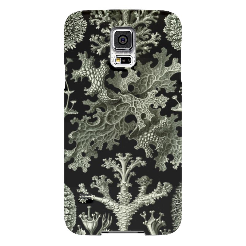 Чехол для Samsung Galaxy S5 Printio Лишайники (lichenes, ernst haeckel) чехол для samsung galaxy s5 printio череп художник