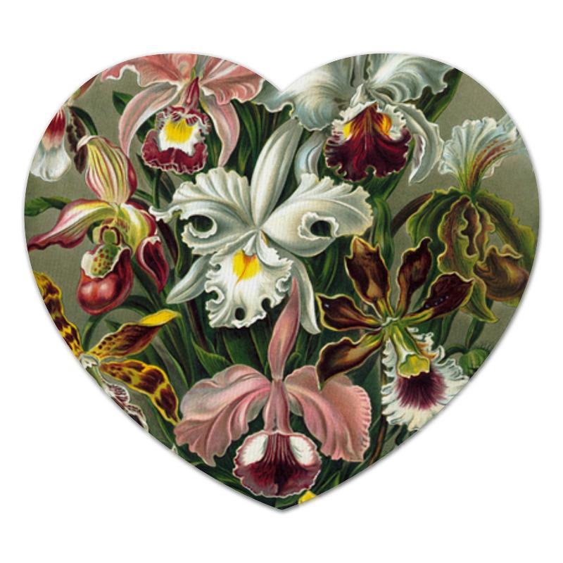Коврик для мышки (сердце) Printio Орхидеи эрнста геккеля самые дешевые орхидеи в москве
