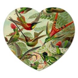 """Коврик для мышки (сердце) """"Колибри (Trochilidae, Ernst Haeckel)"""" - птицы, картина, колибри, красота форм в природе, эрнст геккель"""