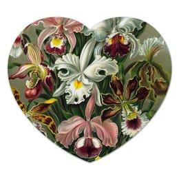 "Коврик для мышки (сердце) ""Орхидеи Эрнста Геккеля"" - цветы, орхидея, эрнст геккель, 14фев, 8мар"