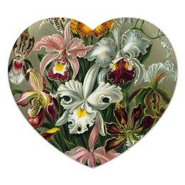 """Коврик для мышки (сердце) """"Орхидеи (Orchideae, Ernst Haeckel)"""" - цветы, картина, орхидея, красота форм в природе, эрнст геккель"""