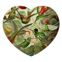 """Коврик для мышки (сердце) """"Колибри (Trochilidae, Ernst Haeckel)"""" - 8 марта, колибри, день матери, красота форм в природе, эрнст геккель"""