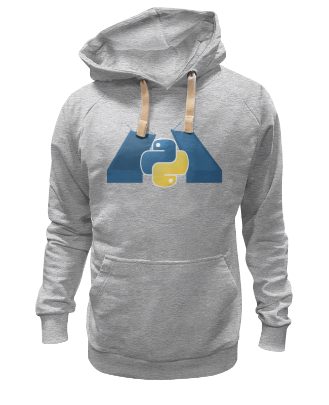 Толстовка Wearcraft Premium унисекс Printio Spb python classic design hoodie цена 2017