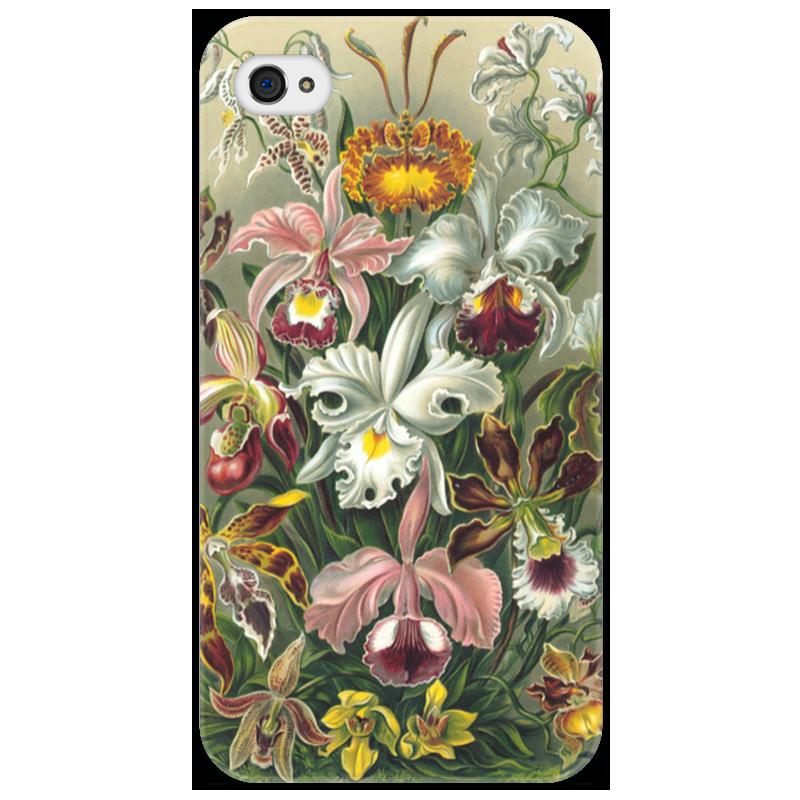 Чехол для iPhone 4/4S Printio Орхидеи (orchideae, ernst haeckel) самые дешевые орхидеи в москве
