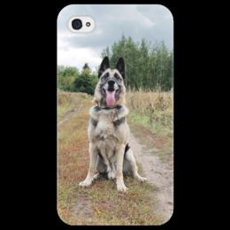 "Чехол для iPhone 4/4S ""Овчарка Дейк"" - собака, овчарка, овчар-команда"